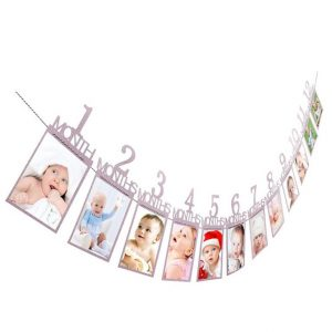 Baby's First Year Photo Banner - 1