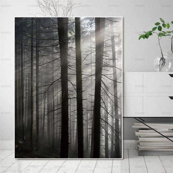 Canvas Wall Art - Sun Through Nordic Forest - 3