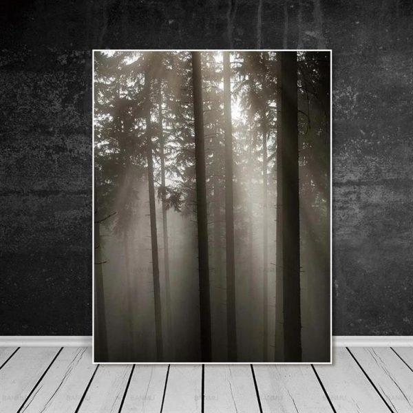 Canvas Wall Art - Sun Through Nordic Forest - 8
