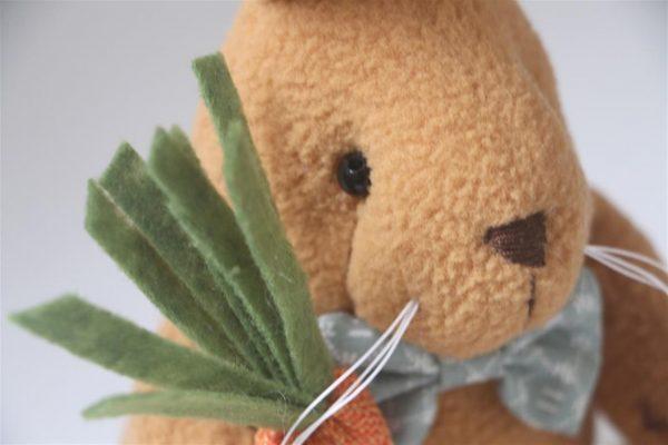 Cute Bunny Rabbit With Carrot - Brown Closeup