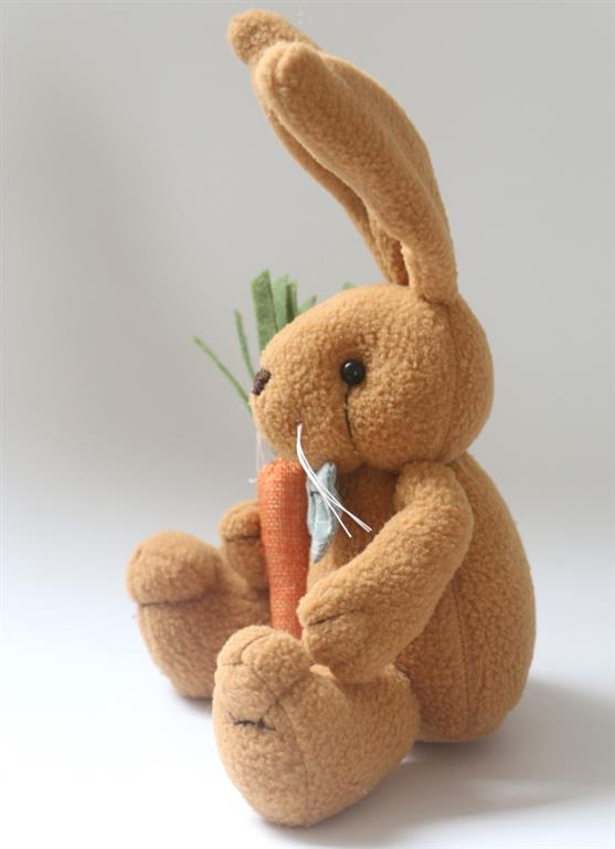 Cute Bunny Rabbit With Carrot - Side
