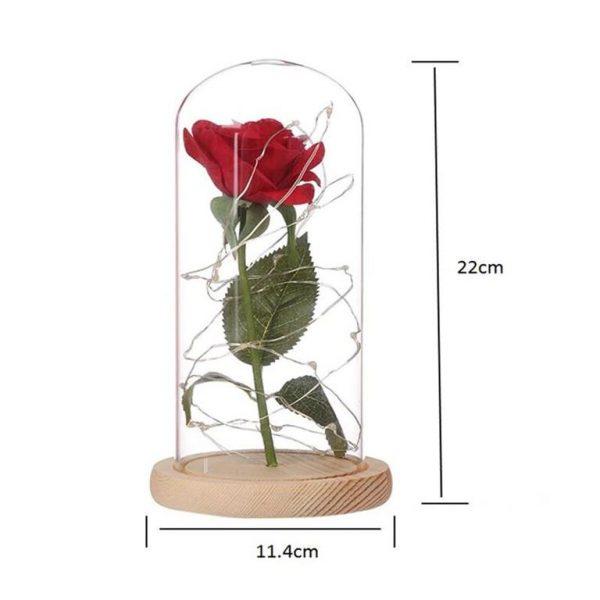 Enchanting LED Rose Flower - Size