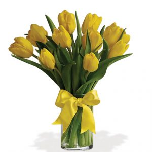 Sunny Yellow Tulips Flower Delivery