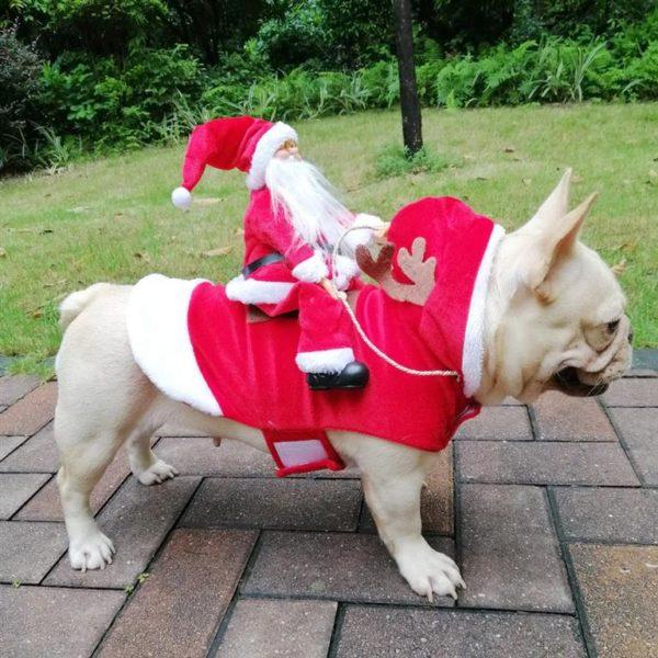 Christmas Costume For Dog - Santa Riding On Dog - 1
