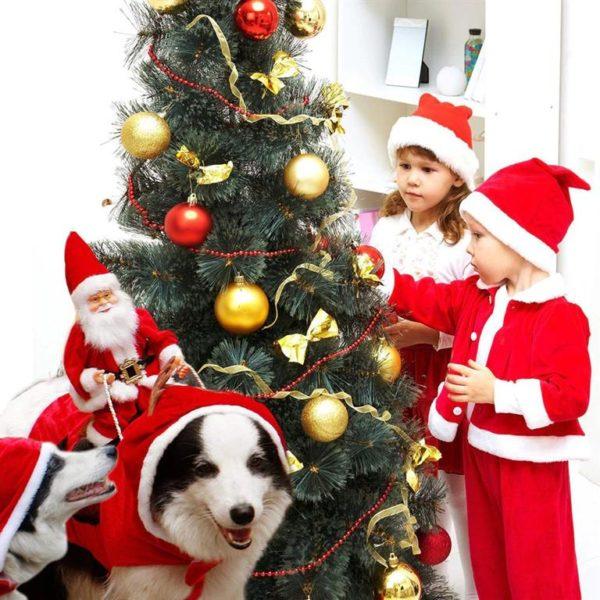 Christmas Costume For Dog - Santa Riding On Dog - 5