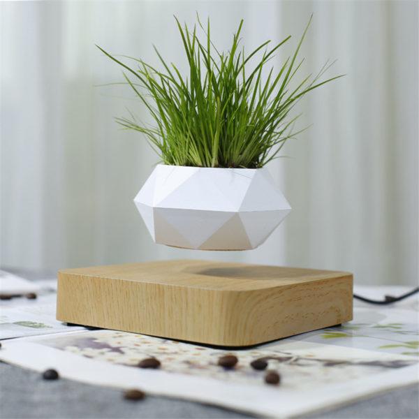 Levitating Pot Plant - 5