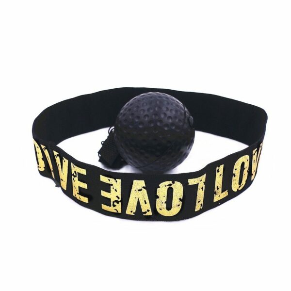 Boxing Reflex Speed Ball 10