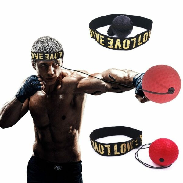 Boxing Reflex Speed Ball 1